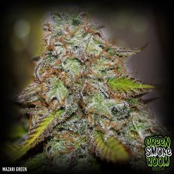 Mazari Green Feminised Seeds