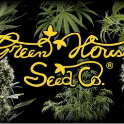 Green House Seed Co