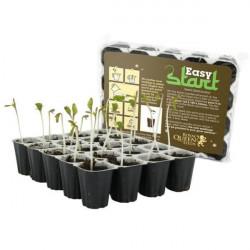 Grow Nutrients