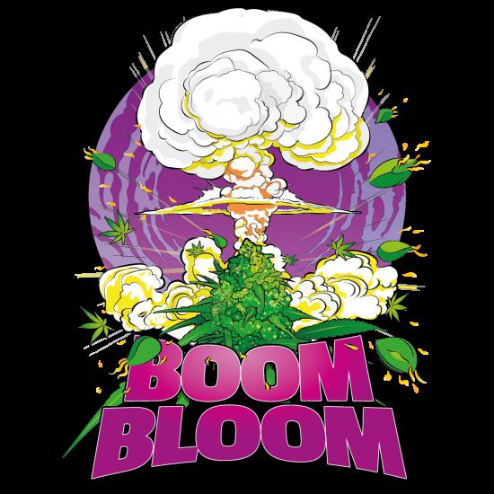 Boom Bloom 1:4:11(30)