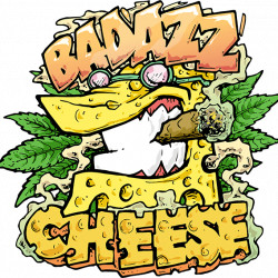 Badazz OG Cheese Feminised Seeds by Seedsman